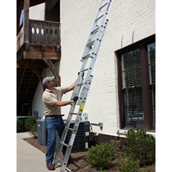 Extension Wall Ladder